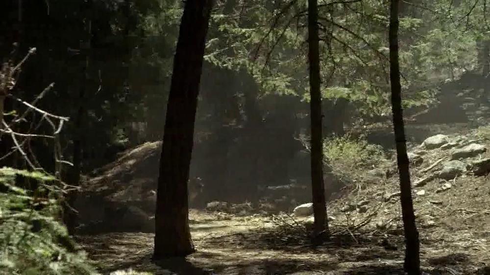 Purina Pro Plan TV Spot, 'If Your Dog Can Dream It: Fetch' - Screenshot 3