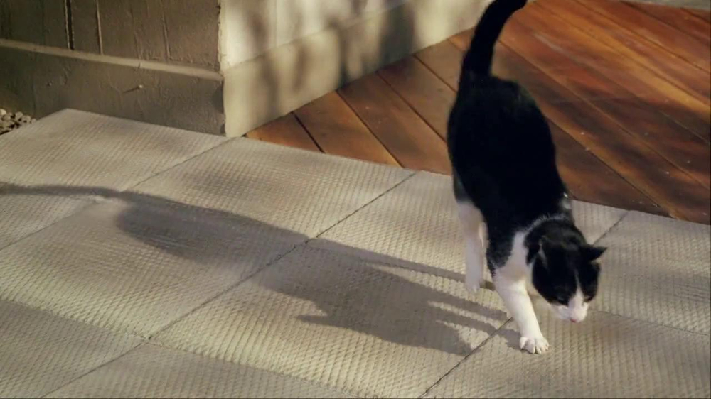 Temptations Cat Treats TV Spot, 'Off the Balcony' - Screenshot 4