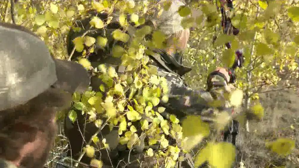 Montana fish wildlife and parks elk hunting large 2 jpg