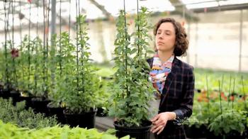 Similasan TV Spot, 'Greenhouse'