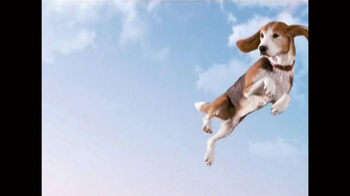 Frontline Plus for Dogs TV Spot, 'Flea Fighter' - 7501 commercial airings