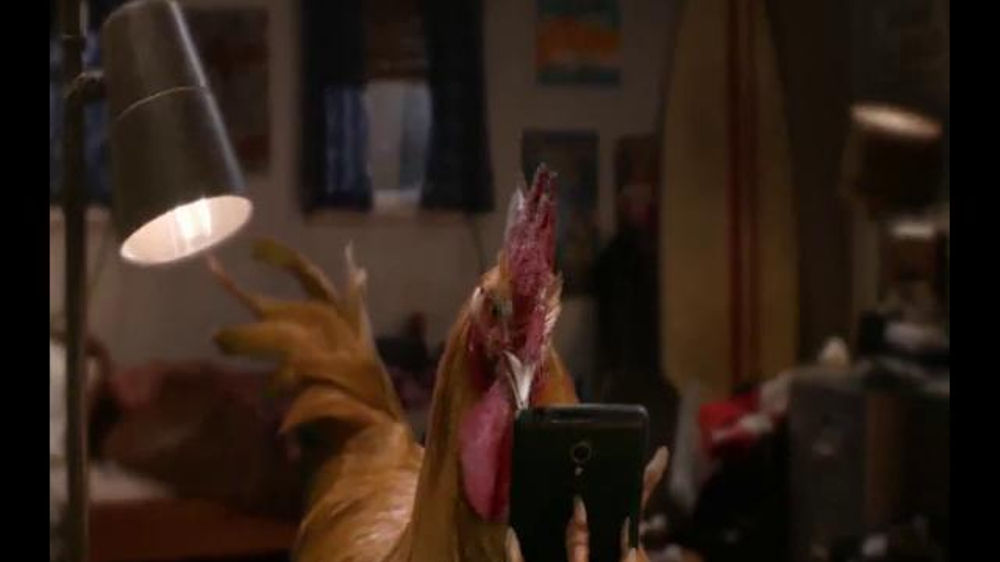 About Burger King Chicken Fries TV Commercial Date