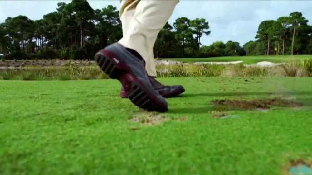 Ernie Els Golf Shoes Ecco