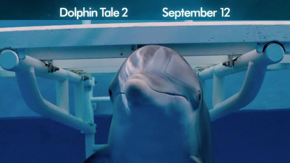 Dolphin Tale 2 - Screenshot 3