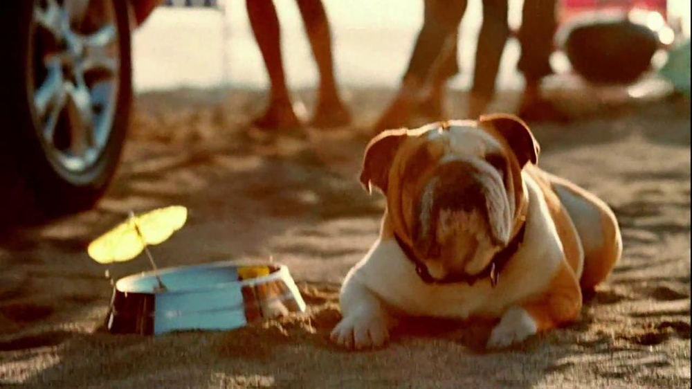 Toyota RAV4 TV Spot, 'Dog's Great Day' Featuring LL Cool J - Screenshot 10