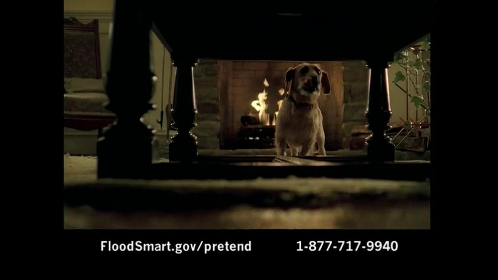 National Flood Insurance Program TV Spot - Screenshot 4
