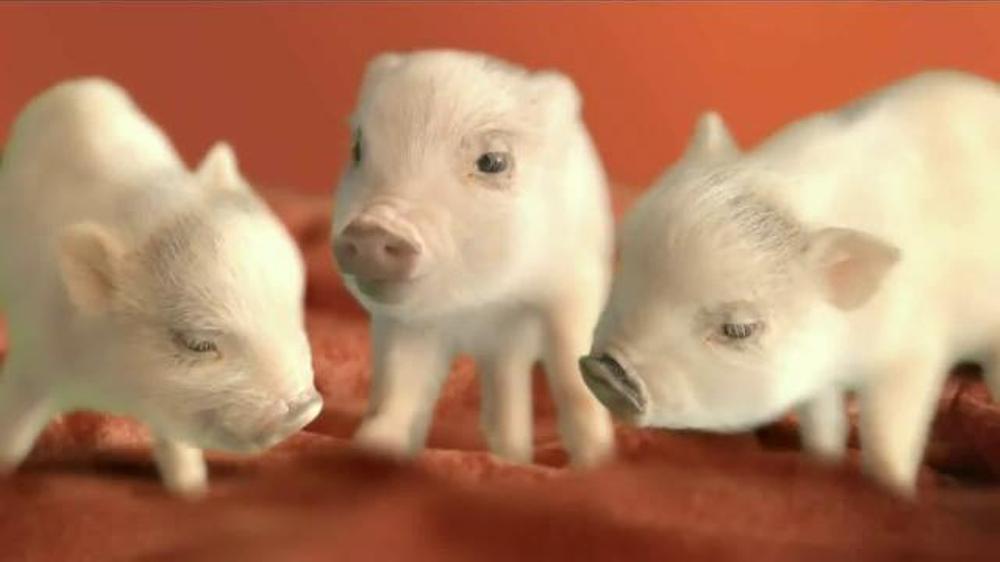 The Home Depot Carpet TV Spot, 'Little Piggies' thumbnail