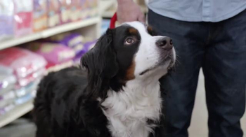 PetSmart TV Spot, 'Partners in Pethood: Gus the Gourmand' thumbnail