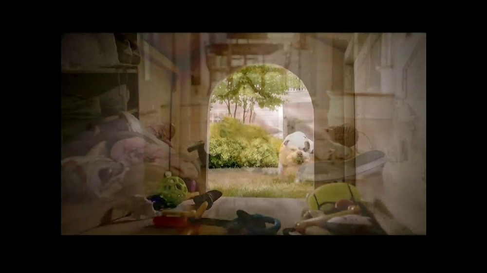 PetSmart TV Spot, 'Dog Types' - Screenshot 4