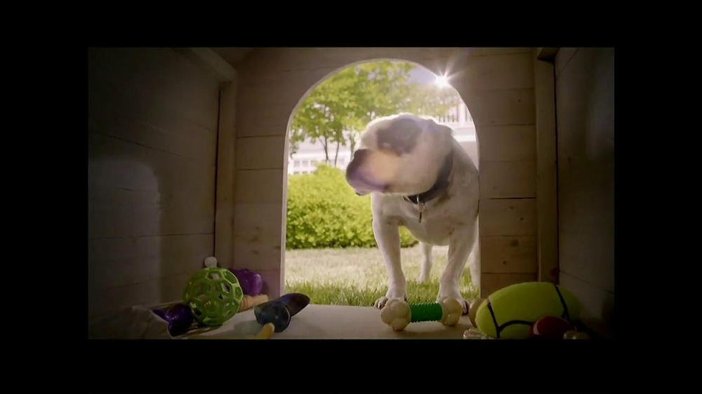 PetSmart TV Spot, 'Dog Types' - Screenshot 5