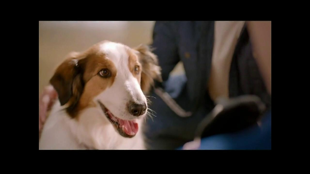 PetSmart TV Spot, 'Dog Types' - Screenshot 9