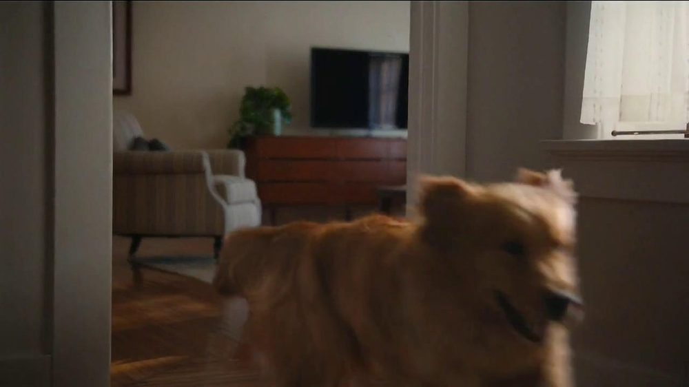 Milk-Bone TV Spot, Song by The Hunts - Screenshot 4