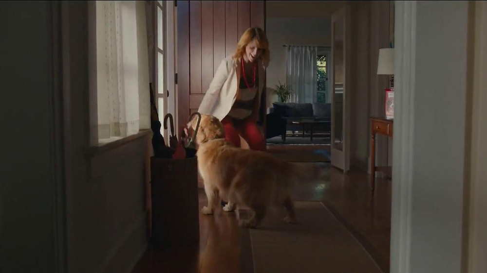Milk-Bone TV Spot, Song by The Hunts - Screenshot 6