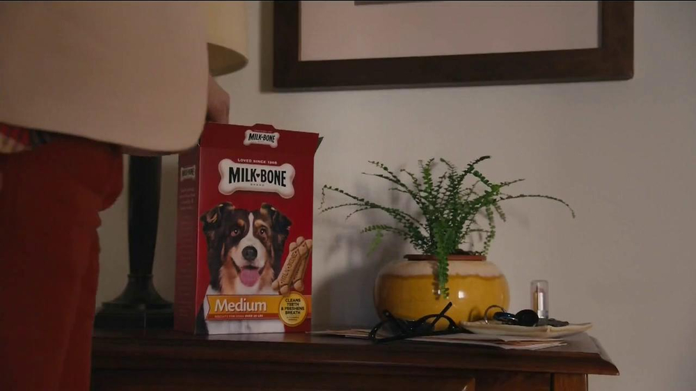 Milk-Bone TV Spot, Song by The Hunts - Screenshot 8