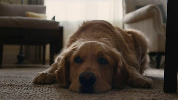 Milk-Bone TV Spot, Song by The Hunts - Thumbnail 1