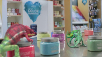 Valspar Signature TV Spot, 'Chameleons: It Says Blue'