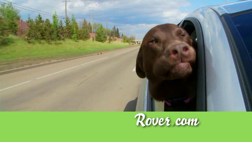 Rover.com TV Spot, 'Dog People' - Screenshot 2
