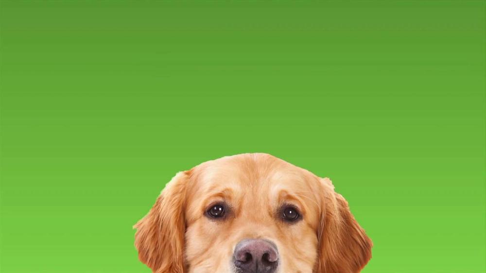 Rover.com TV Spot, 'Dog People' - Screenshot 8