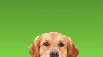 Rover.com TV Spot, 'Dog People' - Thumbnail 8