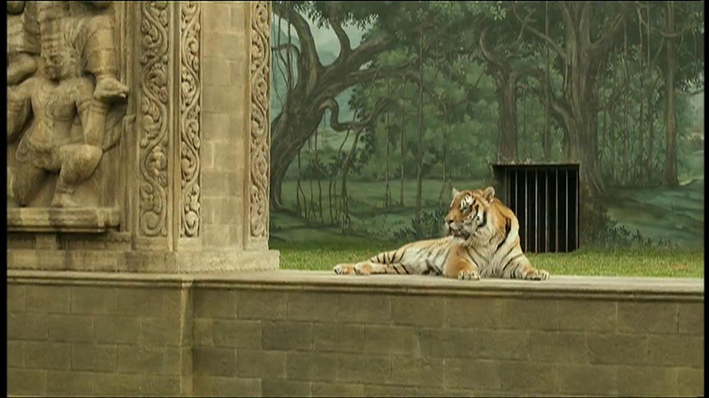 World wildlife fund tv commercial 39 life of pi 39 for Life of pi animals
