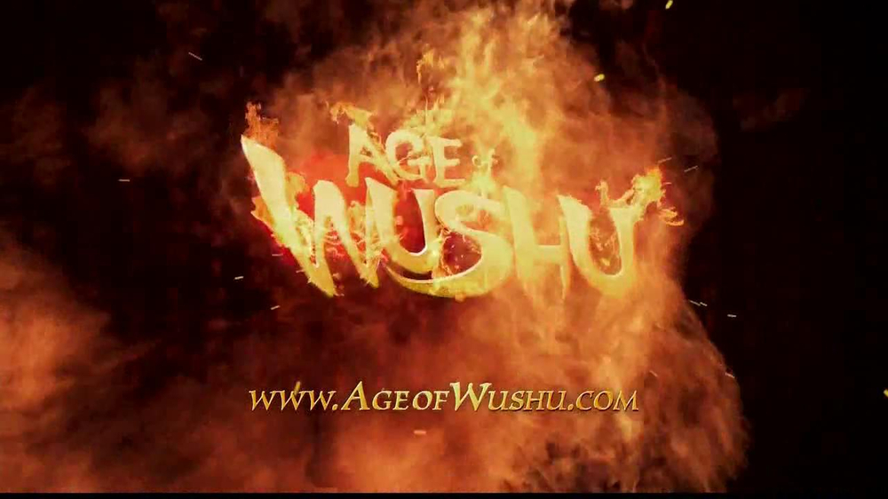 Snail Games TV Spot, 'Age of Wushu' - Screenshot 8