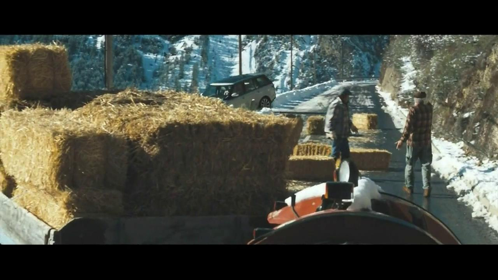 What Breed Of Dog In Land Rover Commercial | Auto Design Tech