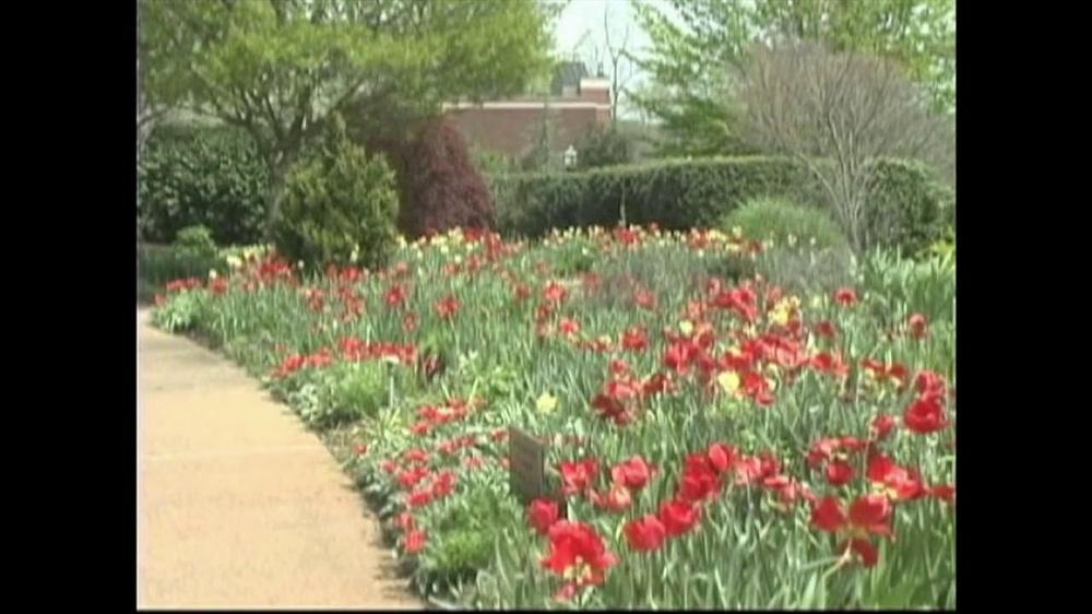 American public gardens association for American garden association