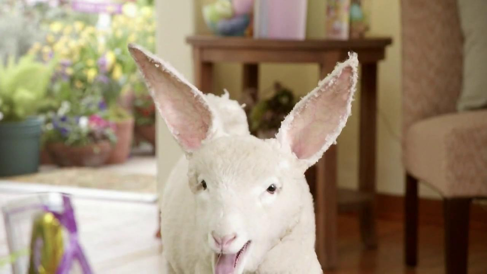 Kmart TV Spot, 'Lambbit Runs Away' - Screenshot 7