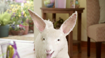 Kmart TV Spot, 'Lambbit Runs Away' - Thumbnail 7