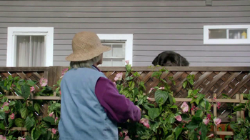 Bank of America BankAmericard TV Spot, 'Benny the Dog' - Thumbnail 2