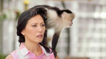 Sears Shop Your Way TV Spot, 'A Monkey's Uncle' Featuring Lorenzo Lamas