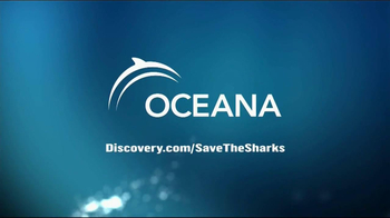Discovery Channel Save the Sharks TV Spot Featuring Paul Walker - Thumbnail 7