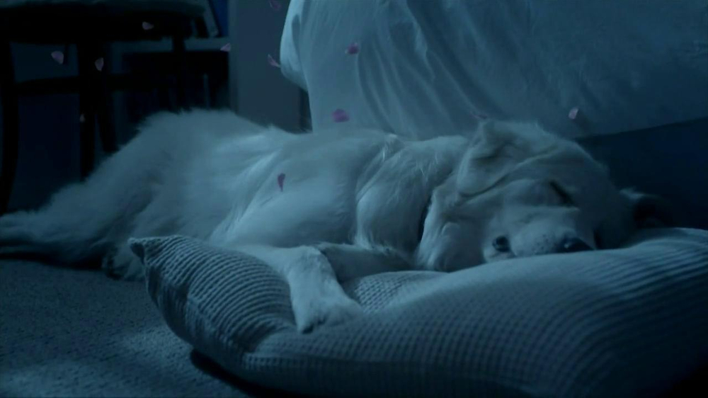 Febreze Sleep Serenity TV Spot, 'Lights Out' - Screenshot 6