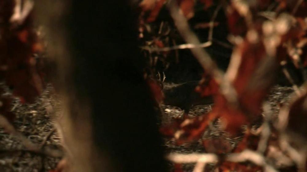 Wildlife Research Center Golden Scrape TV Spot - Screenshot 5