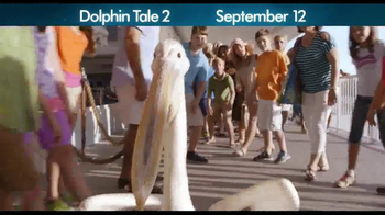 Dolphin Tale 2 - Alternate Trailer 14