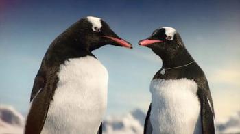 Kay Jewelers : Penguin Kiss