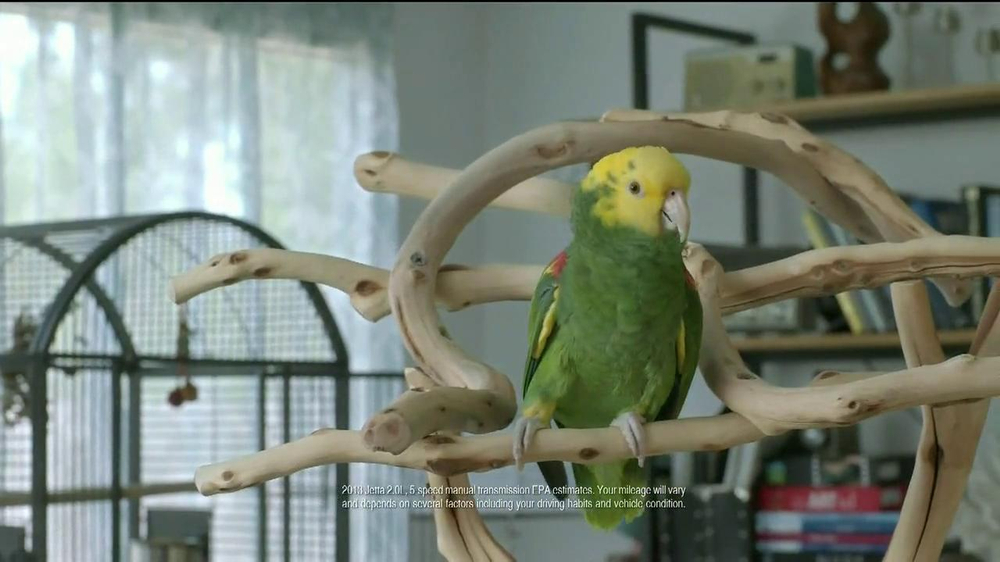 Volkswagen Best. Thing. Ever. Event TV Spot, 'Parrot' - Screenshot 2