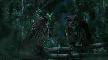 GEICO TV Spot, 'Owls' - Thumbnail 10