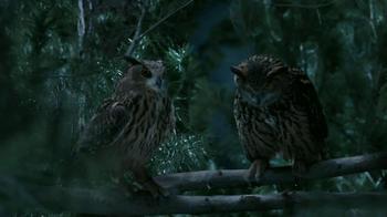 GEICO TV Spot, 'Owls' - Thumbnail 8