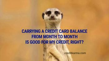 Credit Karma TV Spot, 'Meerkat'