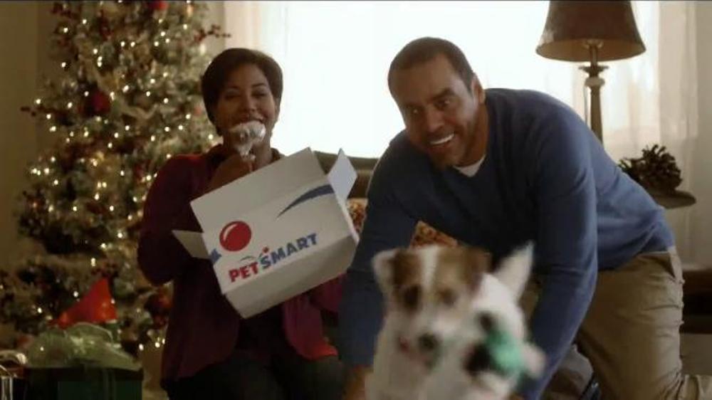 PetSmart Holiday TV Spot, 'Toys and Treats' thumbnail