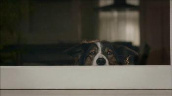 Verizon TV Spot, 'Dog' thumbnail