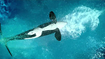 SeaWorld TV Spot, 'The Sea' - Thumbnail 7
