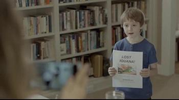 Hewlett Packard (HP): Lost Iguana