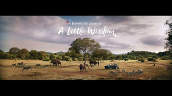 Travelocity: A Little Wisdom: Safari