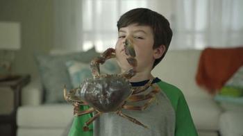 Joe's Crab Shack: Crabs: For Pots Not Pets