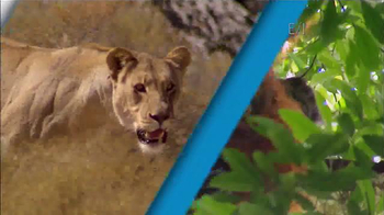 Nationwide Insurance TV Spot, 'Devotion' Featuring Jack Hanna