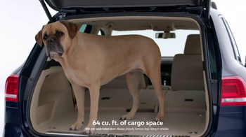 Volkswagen: Drivers With Dogs