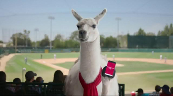 Bank of America: Llove Your App: Outfield
