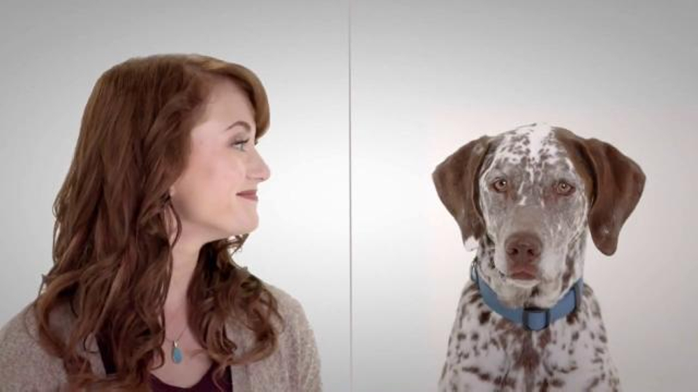Actors Names Of Perfect Couple Liberty Mutual Commercial | MEJOR ...